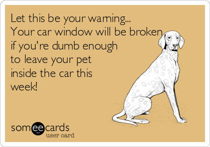 Let this be your warning... Your car window will be broken  if you're dumb enough to leave your pet inside the car this week!