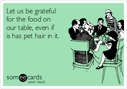 Let us be grateful for the food on our table, even if is has pet hair in it.