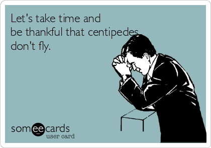 Let's take time and be thankful that centipedes  don't fly.