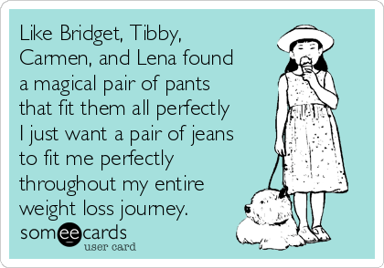 Like Bridget, Tibby, Carmen, and Lena found a magical pair of pants that fit them all perfectly I just want a pair of jeans to fit me perfectly throughout my entire weight loss journey.