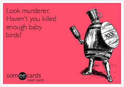 Look murderer, Haven't you killed enough baby birds?