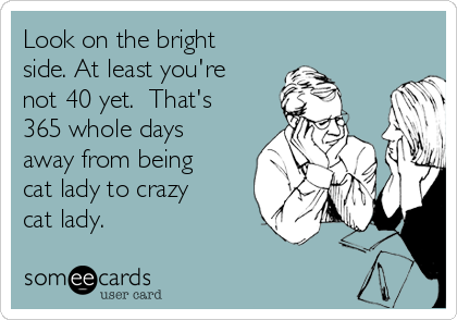 Look on the bright side. At least you're not 40 yet.  That's 365 whole days away from being cat lady to crazy cat lady.