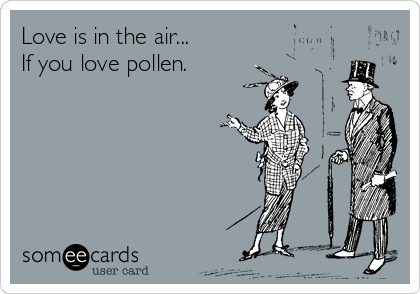 Love is in the air... If you love pollen.