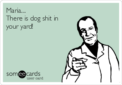 Maria.... There is dog shit in  your yard!