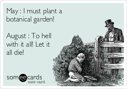 May : I must plant a botanical garden!  August : To hell with it all! Let it all die!