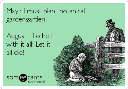 May : I must plant botanical gardengarden!  August : To hell with it all! Let it all die!