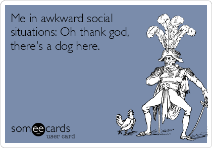 Me in awkward social situations: Oh thank god, there's a dog here.