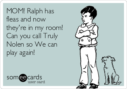 MOM! Ralph has fleas and now they're in my room! Can you call Truly Nolen so We can play again!