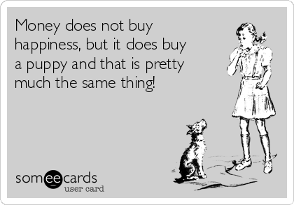 Money does not buy happiness, but it does buy a puppy and that is pretty much the same thing!