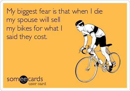 My biggest fear is that when I die my spouse will sell my bikes for what I said they cost.