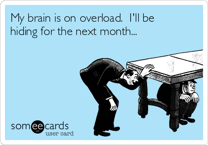 My brain is on overload.  I'll be hiding for the next month...