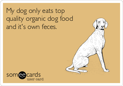 My dog only eats top quality organic dog food and it's own feces.