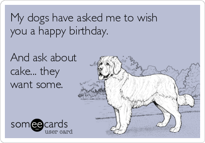 My dogs have asked me to wish you a happy birthday.   And ask about cake... they want some.