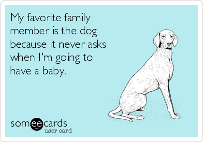 My favorite family member is the dog because it never asks when I'm going to have a baby.