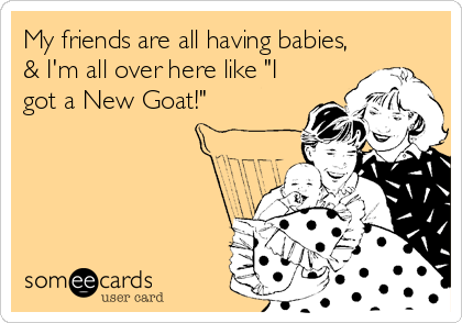 "My friends are all having babies, & I'm all over here like ""I got a New Goat!"""