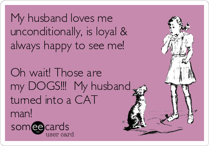 My husband loves me unconditionally, is loyal & always happy to see me!  Oh wait! Those are my DOGS!!!  My husband turned into a CAT man!