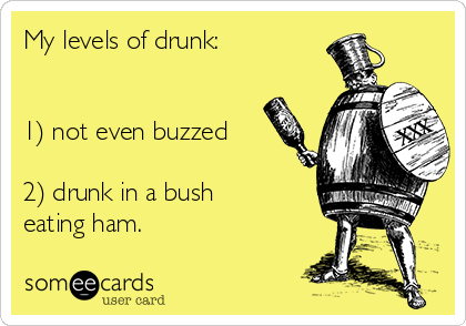 My levels of drunk:   1) not even buzzed  2) drunk in a bush eating ham.