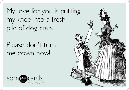 My love for you is putting my knee into a fresh pile of dog crap.   Please don't turn me down now!