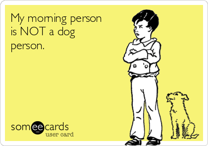 My morning person  is NOT a dog person.