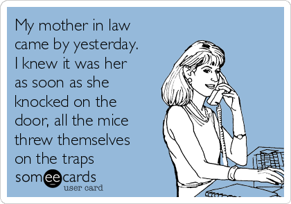 My mother in law came by yesterday. I knew it was her as soon as she knocked on the door, all the mice threw themselves on the traps