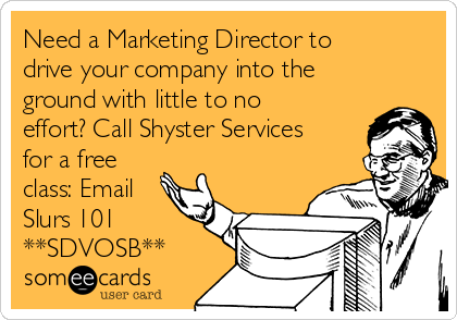 Need a Marketing Director to drive your company into the ground with little to no effort? Call Shyster Services for a free class: Email Slurs 101 **SDVOSB**