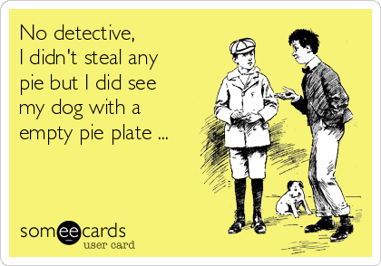No detective, I didn't steal any pie but I did see my dog with a empty pie plate ...