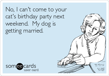 No, I can't come to your cat's birthday party next weekend.  My dog is getting married.