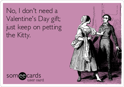 No, I don't need a Valentine's Day gift; just keep on petting the Kitty.
