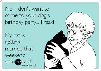 No, I don't want to come to your dog's birthday party... Freak!  My cat is getting married that weekend.