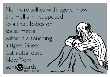 No more selfies with tigers. How the Hell am I supposed to attract babes on social media without a touching a tiger? Guess I just gotta leave New York.