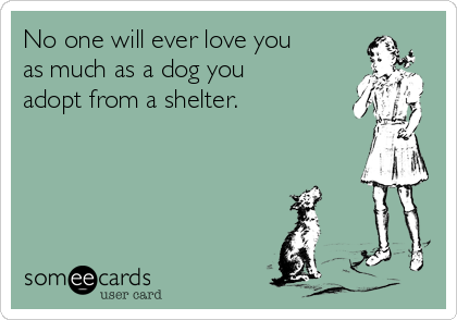 No one will ever love you as much as a dog you adopt from a shelter.