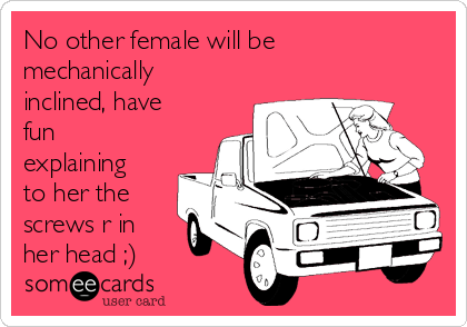 No other female will be mechanically inclined, have fun explaining to her the screws r in her head ;)