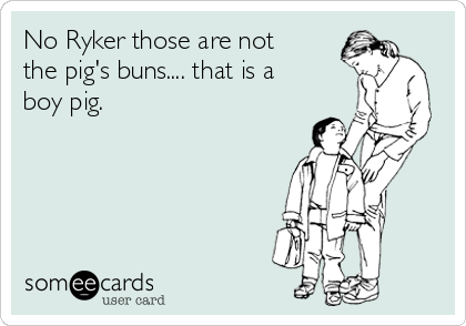 No Ryker those are not the pig's buns.... that is a boy pig.