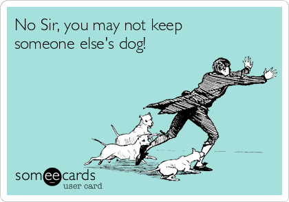 No Sir, you may not keep someone else's dog!