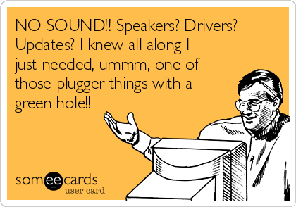 NO SOUND!! Speakers? Drivers? Updates? I knew all along I just needed, ummm, one of those plugger things with a green hole!!