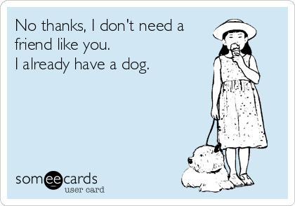 No thanks, I don't need a  friend like you. I already have a dog.