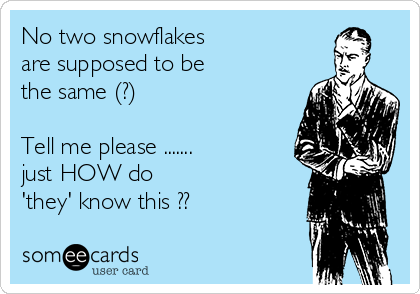 No two snowflakes  are supposed to be  the same (?)   Tell me please ....... just HOW do  'they' know this ??