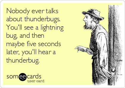 Nobody ever talks about thunderbugs. You'll see a lightning bug, and then maybe five seconds later, you'll hear a thunderbug.
