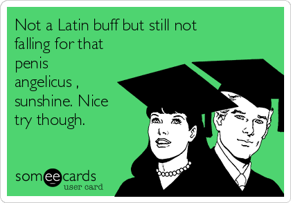 Not a Latin buff but still not falling for that penis angelicus , sunshine. Nice try though.
