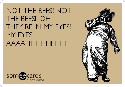 NOT THE BEES! NOT THE BEES!! OH, THEY'RE IN MY EYES! MY EYES! AAAAHHHHHHHH!