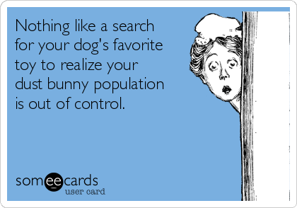 Nothing like a search for your dog's favorite toy to realize your dust bunny population is out of control.