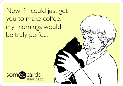 Now if I could just get you to make coffee, my mornings would be truly perfect.