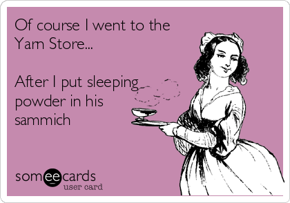 Of course I went to the Yarn Store...  After I put sleeping powder in his sammich