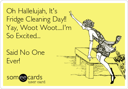 Oh Hallelujah, It's Fridge Cleaning Day!! Yay, Woot Woot ...