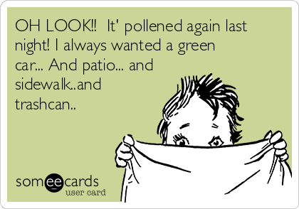 OH LOOK!!  It' pollened again last night! I always wanted a green car... And patio... and sidewalk..and trashcan..