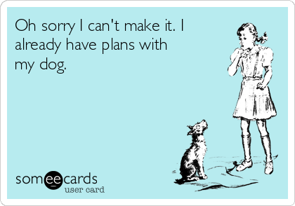 Oh sorry I can't make it. I already have plans with my dog.
