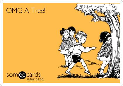 OMG A Tree!