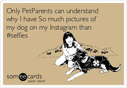 Only PetParents can understand why I have So much pictures of my dog on my Instagram than #selfies