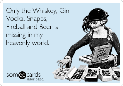 Only the Whiskey, Gin, Vodka, Snapps, Fireball and Beer is missing in my heavenly world.