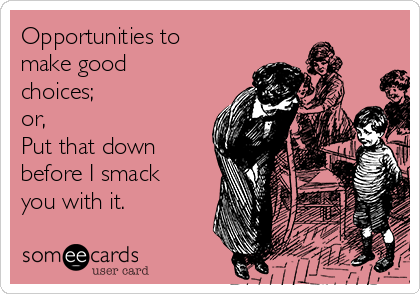 Opportunities to make good choices; or, Put that down before I smack you with it.